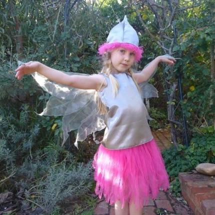 Gumnut Fairy Dress and Hat – Silver Princess